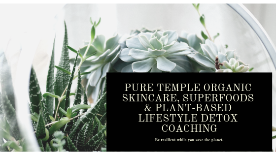 Pure Temple Holistic Lifestyle Detox