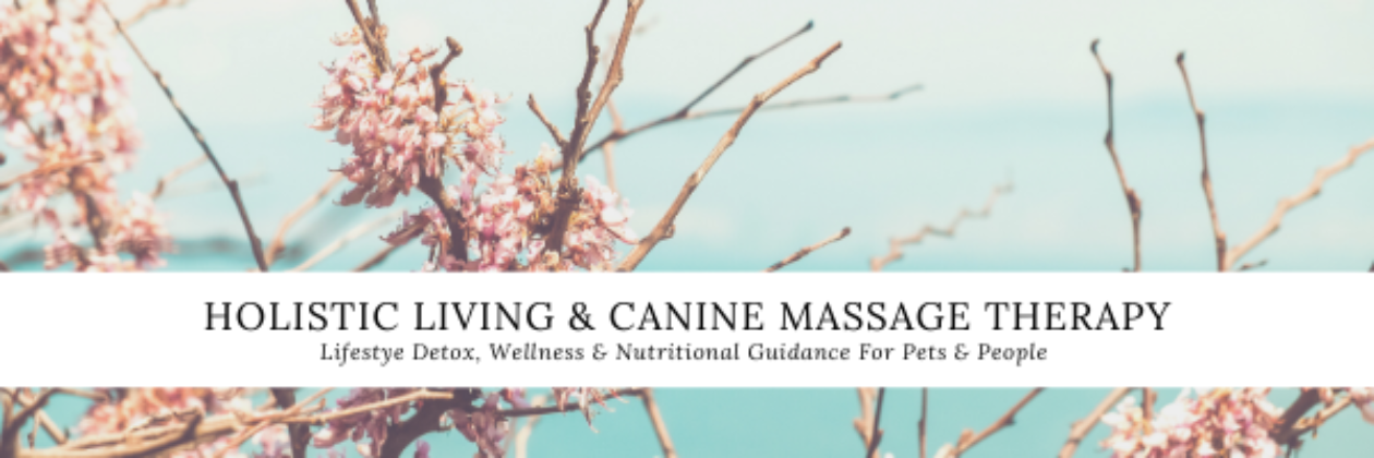 Pure Temple Holistics & PurePet Canine Massage Therapy